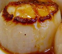 scallop-tea