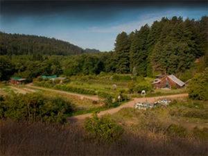 oz-farm-retreat